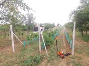 Vinohrad vrtání a usazování sloupků