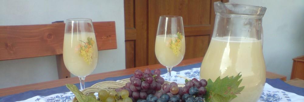 Vinný sklep s ubytováním u Štipčáků
