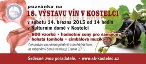 Výstava vín kostelec 2015
